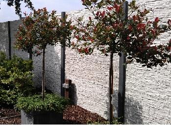 Beton schutting graniet motief grijze beton palen